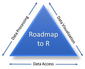 d-wise Roadmap to R