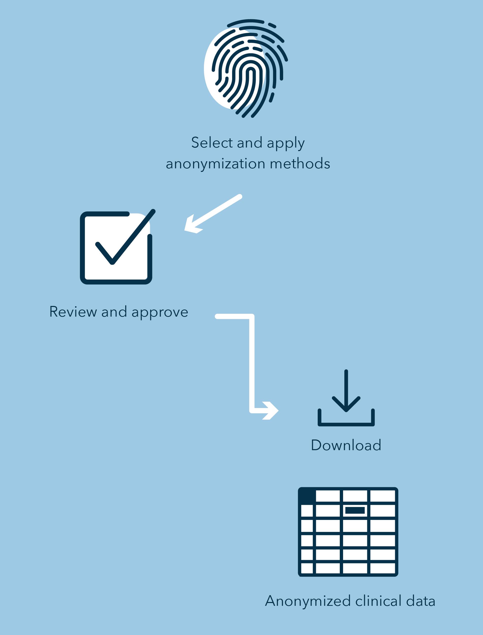 blur-de-identification-service-process.png
