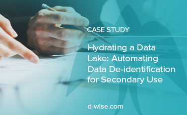 hydrating a data lake case study thumbnail