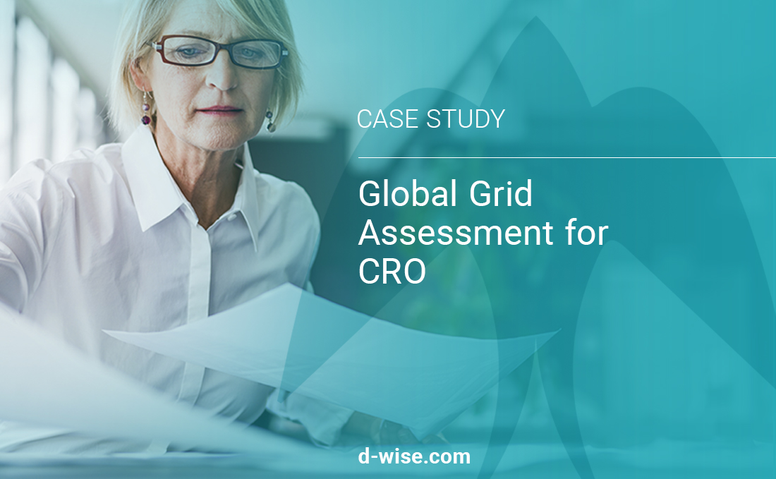 global-grid-assessment-for-cro